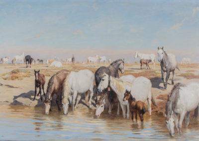 Troupeau de chevaux en Camargue
